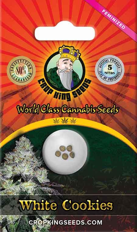 White Cookies Feminized Marijuana Seeds