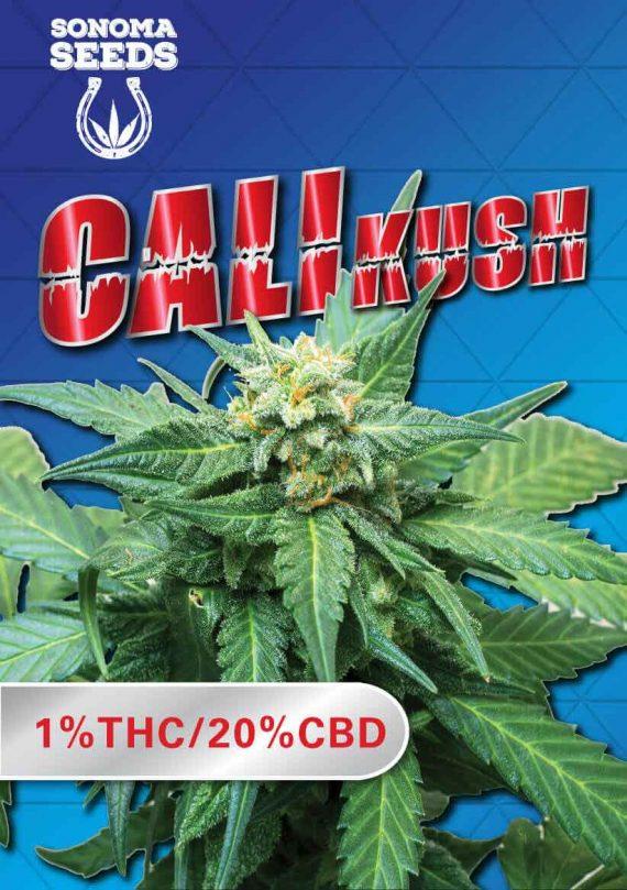 Cali Kush CBD Cannabis Strain