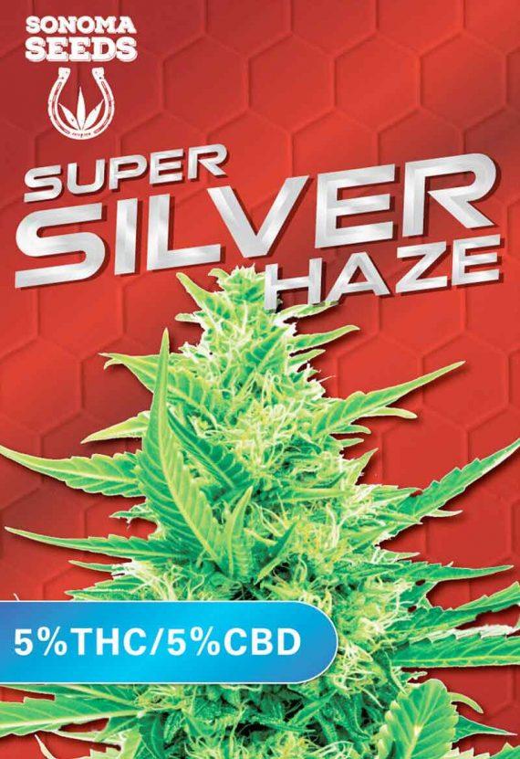Super Silver Haze CBD Cannabis Strain