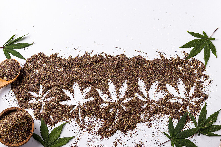 20 Surprising Facts About the Cannabis Seeds Business