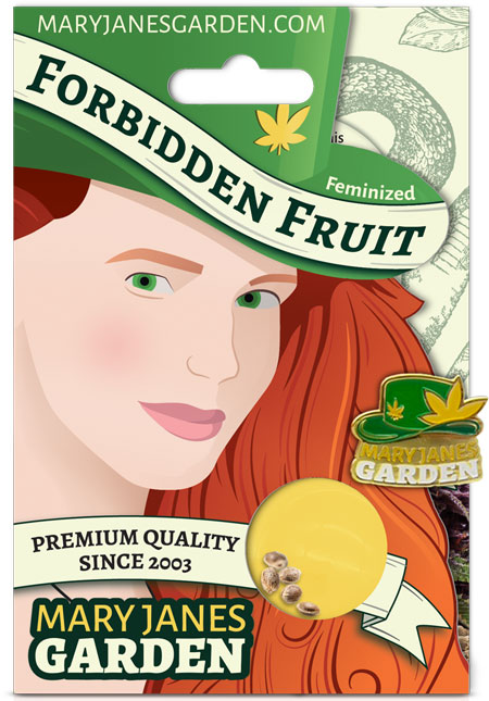 Forbidden Fruit Feminized Marijuana Seeds