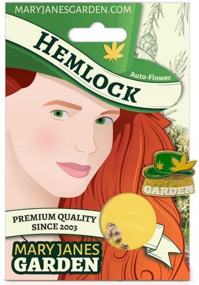 Hemlock Autoflowering Marijuana Seeds